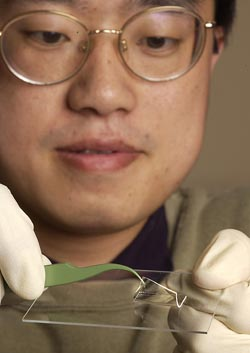 Tom Huang assembles a new microfluidic chip