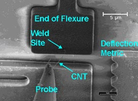 Zyvex - CNT welded to a probe and a MEMS flexure