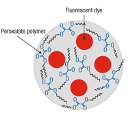 The nanoparticle polymer is made of peroxalate esters. A fluorescent dye (pentacene) is then encapsulated into the polymer. When the nano particles bump into hydrogen peroxide, they excite the dye, which then emits photons (or light) that can be detected.