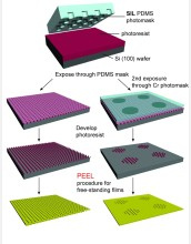 "A new fabrication technique, known as soft interference lithography (SIL), makes it possible to inexpensively produce large sheets of gold films with virtually infinite arrays of perforations and microscale ""patches"" of nanoscale holes. A combination of interference lithography and soft lithography, SIL offers many significant advantages over existing techniques. It can be used to scale-up the nanomanufacturing process to produce plasmonic metamaterials and devices in large quantities. Devices such as films of nanoholes can also serve as templates to make their inverse structures, such as nanoparticles. (Legend: Si=silicon; Cr=chromium; PEEL=electron spectroscopy method called parallel electron energy loss spectroscopy.)