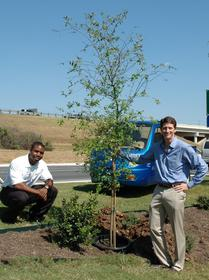 ZAP electric car dealer Tito Norris (right) held a tree-planting ceremony with manager Nathaniel Mack to mark the grand opening of their new dealership in San Antonio, Texas. They delivered the tree in a ZAP pickup to make a statement about two of the best ways to fight global warming.
