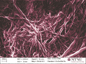 Here are Nature's own mini-mini reinforcement rods. Fibrils are extracted from cells in pine timber. They have a diameter of 50 millionths of a millimetre (nanometres).