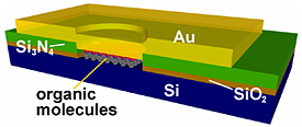 NIST researchers determined that the organic molecules in the middle of this simple silicon-based molecular �sandwich� pass electric current through these junctions by carefully measuring the minute changes in molecular vibrations.
