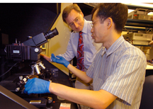 Micro-manipulation probe station