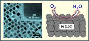The Making of a Platinum Nanocube On the left is a transmission electron microscopy image of 7 nanometer platinum nanocubes used for oxygen reduction reaction. In the upper right corner of this image is a high resolution picture of a single cube. On the right is an illustration demonstrating the oxygen reduction on a Pt(100) surface of a cube. Credit: Courtesy of Chao Wang/Brown University