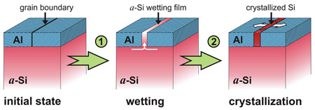 "Fig.: Atomic ordering in the gap: a covering layer of aluminum lowers the crystallization temperature of amorphous silicon (a-Si). First the a-Si covers (""wets"") the grain boundaries in the aluminum layer (A1). Once the wetting a-Si film has reached a critical thickness, crystallization starts at the grain boundaries.