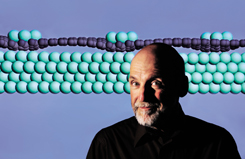 Graphene has proven a difficult material for researchers to tame. Peter Feibelman 's computational simulation suggests an explanation for why iridium atoms (colored green) nest regularly atop a base of graphene (dark-colored atoms) grown over an iridium substrate. Peter's image of the orderly nanoscopic metallic arrangement may provide insights to other scientists. His paper on the work was published last Thursday in Physical Review B online.