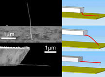"Nanotube attached to a ""microcantilever""