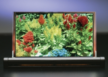 "4.3"" diagonal full-color OLED made with DuPont materials and Dainippon equipment"