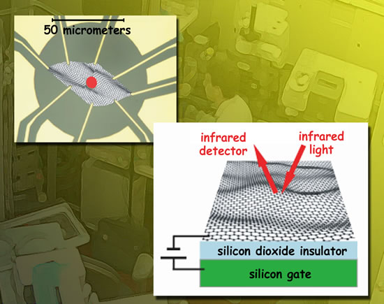 A flake of exfoliated graphene 50 micrometers square was placed on layers of silicon dioxide insulator and a silicon gate. The schematic, left, shows how gold contacts were attached to the graphene to apply gate voltage. A 10-micrometer beam of infrared synchrotron radiation (red spot) was focused onto the graphene to measure transmission and reflectance spectra.