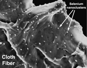 Mercury Sponge  This electron microscope image shows the internal structure of the active sorbent lining. The cloth fibers are laced with active selenium nanoclusters to capture the mercury.Credit: Division of Engineering, Brown Universuty