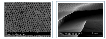 SEM images of free-standing nanoporous silicon-based membranes: (left) top view showing ∼ 35 nm pores with narrow size distribution and (right) side view of 60 nm thick membrane supported by reinforcement bars.