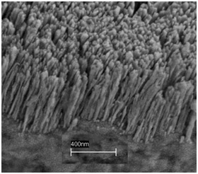 A scanning electron microscope shows copper nanorods deposited on a copper substrate. Air trapped in the forest of nanorods helps to dramatically boost the creation of bubbles and the efficiency of boiling, which in turn could lead to new ways of cooling computer chips as well as cost savings for any number of industrial boiling application.