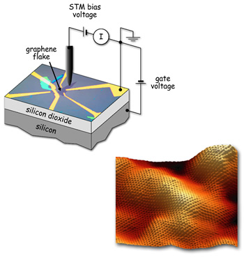 Under the STM tip a flake of graphene 50 microns (millionths of a meter) long rests on a substrate of silicon with a thin layer of silicon dioxide insulation (upper left). The graphene is contacted by gold electrodes, connected to outside experimental equipment and to the underlying silicon electrode, which is used to apply a gate voltage. At lower right, a topographical image of the graphene flake, 10 nanometers (billionths of a meter) across. Variations in height of one or two angstroms (ten-billionths of a meter) are likely caused by the roughness of the substrate.