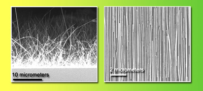 Randomly oriented nanowires, on the growth substrate at left, are having a �bad hair day.� But after contact printing, the nanowires on the receiver substrate are highly aligned.