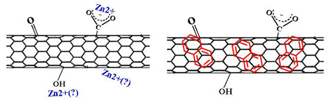 Oxidized carbon nanotubes with sorbates. Credit: Ball Lab / JHU