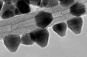Transmission electron microscope image of CdSe nanoparticles covering a multi-wall carbon nanotube. (c) Madrimasd