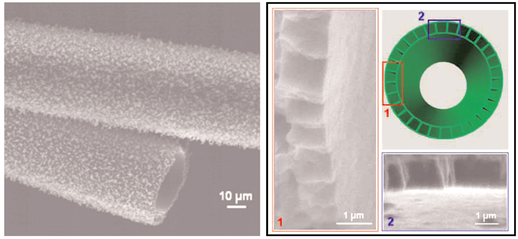 JUMBO TUBES -- a scanning electron microscope image (left) of a huge carbon tube. Images at right depict cross-sectional view of the tube, with rectangular pore tunnels visible in its wall. (photo by Sandi/LANL Center for Integrated Nanotechnologies)