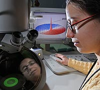 "Argonne materials scientist Mihaela Tanase observes a small magnetic disk with a transmission electron microscope. Tanase discovered a new method to control the way the atoms in the magnetic disk orient themselves to form ""nanoscale vortices,"" which are illustrated on the computer screen."