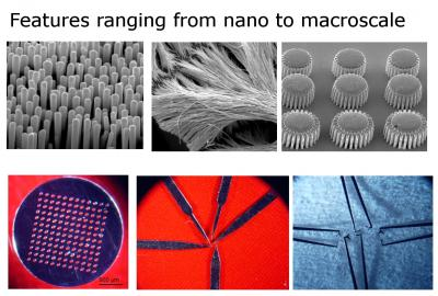 Various parts (nano-molds, nano-wires, gears, membrane, scalpels, and tweezers) fabricated by molding metallic glass over wide range of length scales -- from 13 nm to several millimeters.