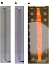 A. An artificial muscle strip with no voltage applied.