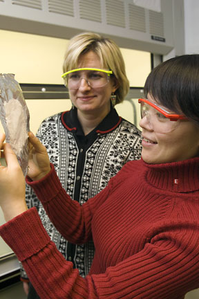 Margaret Frey, left, associate professor of fiber science and apparel design, and research associate Chunhui Xiang have developed a method to deliver pesticides via nanofibers.