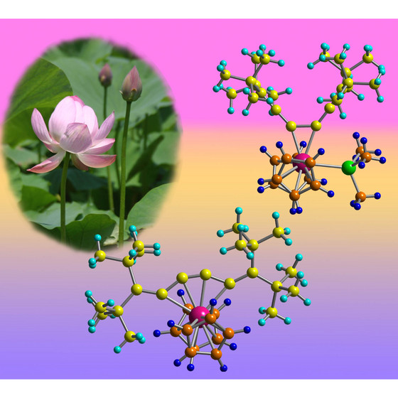 Figure 1: Schematic showing that adding or removing an extra chemical group (green) to the zirconium atom (pink) can open and close the structure of the molecule like the petals of a lotus flower.