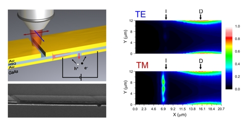 Figure: Top left:  schematic overview of the device, showing focused illumination of a slit in the waveguide using polarized light. This results in plasmon excitation of the waveguide for the red polarization and the generation of electron/hole pairs in the semiconductor. Bottom left: SEM picture of a typical device. Top/bottom right: Photocurrent scans for the �red� (bottom) and �blue� (top) polarization indicate a strong polarization dependence of the photoresponse � doi:10.1038/nphoton.2009.47