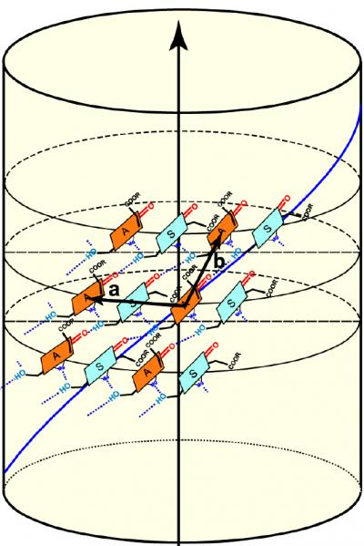 The Nuclear Magnetic Resonance (NMR) results enabled the scientists to determine that the chlorophyll molecules (shown in green and orange) in green bacteria are arranged in helical spirals, and are positioned at an angle to the long axis of the nanotubes.