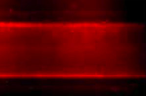 This image shows a microtube surface coated with nanocapsules containing a small-interfering RNA (which glows red under a fluorescent microscope). The capsules were targeted to specific circulating cells.