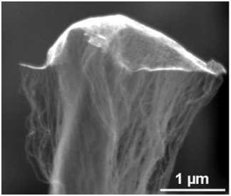 "An odako grown at Rice University shows single-walled nanotubes lifting an iron and aluminum oxide ""kite"" as they grow while remaining firmly rooted in a carbon base."