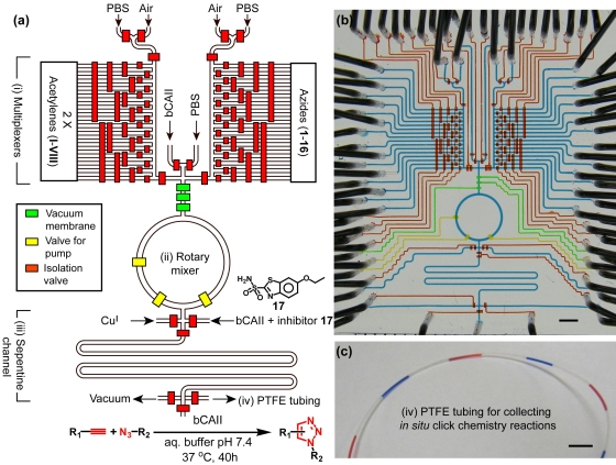 Design of the second-generation integrated microfluidic device.