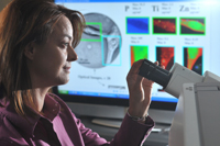 Argonne scientist Elena Rozhkova examines brain cancer cells under a microscope. Rozhkova, along with researchers from the University of Chicago, has developed a way to attach a antibody to nanomaterial titanium dioxide and kill brain cancer cells.