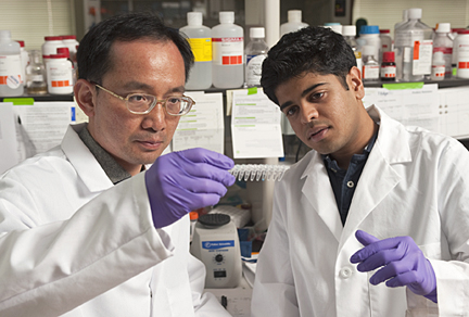 Jeff Wang, an associate professor of mechanical engineering, and biomedical engineering doctoral student Vasudev Bailey examine samples of modified DNA during a new test designed to detect early genetic clues linked to cancer. Photo by Will Kirk