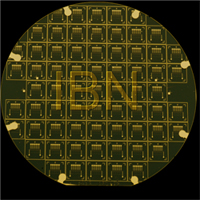 IBN�s Nanogap Sensor Array wafer chip can detect DNA rapidly and cost effectively.