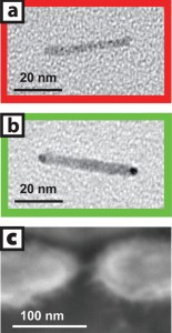 Image (a) is a transmission electron micrograph of a cadmium-selenide nanocrystal before gold tip growth in solution and image (b) is after tips have been added. Image (c) is a scanning electron micrograph of a single nanocrystal two-terminal device.