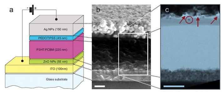 Figure 1 - (a) Schematic build-up of the organic solar cell, (b) SEM and (c) FIB/TEM cross sections of the polymer solar cell with a spray coated Ag top contact.