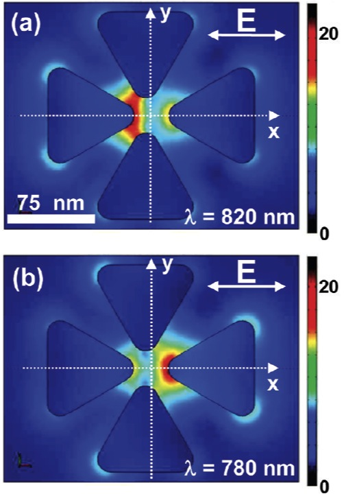 This scanning electron image of a nano colorsorter with the vertical bowtie antenna shifted 5 nanometers (nm) to the left of center. In (a) the bowtie has been excited at 820 nm and in (b) at 780 nm. The two modes are spectrally and spatially distinct while maintaining nanoscale mode volumes.
