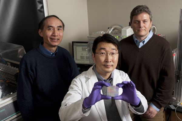 Leslie Tung, left, and Andre Levchenko, right, both of the Department of Biomedical Engineering, with Deok-Ho Kim, a doctoral student in Levchenko�s lab, who holds a nanopatterned chip able to cue heart cells to behave like natural heart tissue. Photo: Will Kirk/homewoodphoto.jhu.edu