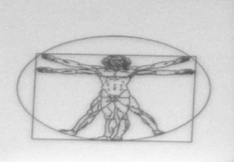 This image of Leonardo da Vinci's Vitruvian Man is milled into a piece of silicon by a focused ion beam instrument and is 15 µm in diameter