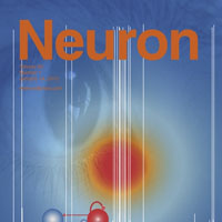 Dr Kittler's research is published in the 14 January issue of Neuron journal