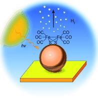 Hitting water with a 2 iron: A novel nanophotocathode for hydrogen production that is based on a multilayer array of InP quantum dots activated with a synthetic diiron catalyst, which is related to the subsite of FeFe hydrogenase.