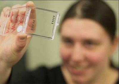 TINY TECHNOLOGY: Postgraduate student Ashley Kibel displays some the nanochips used in her nanotechnology research, focused on biomimicry. The scale of a nano is roughly 40,000 times smaller than the width of a human hair. (Photo by Michael Arellano)