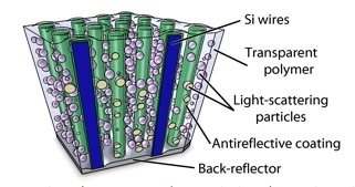 This is a schematic diagram of the light-trapping elements used to optimize absorption within a polymer-embedded silicon wire array. Credit: Caltech/Michael Kelzenberg