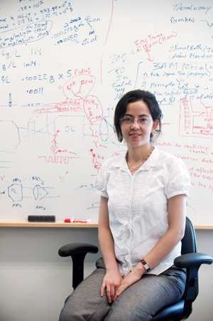 Hatice Altug, an assistant professor of electrical and computer engineering. Photo by Vernon Doucette