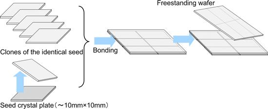 Figure 1 : Production process of a mosaic large-area wafer