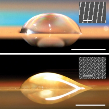 A symmetrical droplet (top) forms on a surface with straight nano-pillars, while on a surface with bent pillars (bottom) the droplet is asymmetrical, extending out only to the right. Inset images are micrographs of the surface structure.  Images: Kuang-Han Chu, Rong Xiao and Evelyn N. Wang