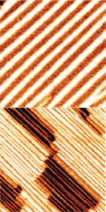 These nanoscale images of bismuth ferrite thin films show ordered arrays of 71 degree domain walls (top) and 109 degree doman walls (bottom). By changing the polarization direction of the bismuth ferrite, these domain walls give rise to the photovoltaic effect. (Image from Seidel, et. al.)