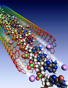DNA threads through a carbon nanotube. Enlarged to this scale, the nanotube would extend about the length of a football field.
