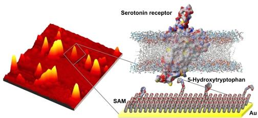 Fishing for molecules
